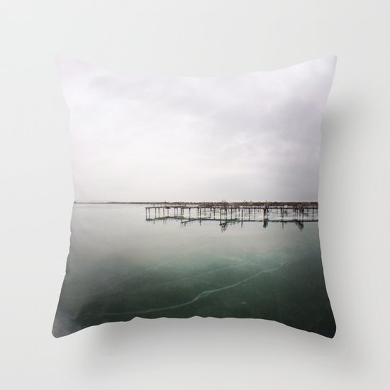 over the ice Throw Pillow