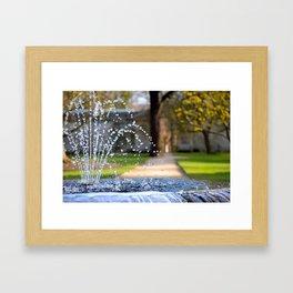 Oxford Botanic Garden Framed Art Print