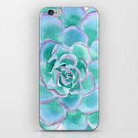 succulent iPhone & iPod Skins featuring Succulent by Susan Windsor