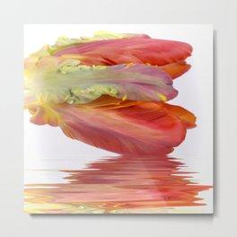 Orange Parrot Tulip Reflecting Metal Print
