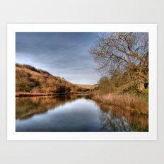 Millington Reflections Art Print