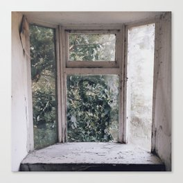 overgrown window Canvas Print