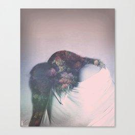 Summation Canvas Print