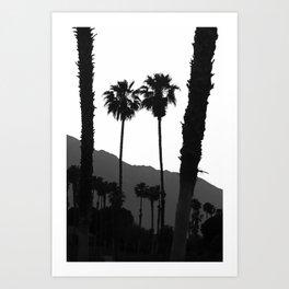 Tropical Darkroom #444 Art Print