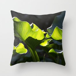 Green Contrast - Light and Dark Throw Pillow