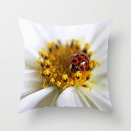 Lady Bug and her Cosmo Throw Pillow