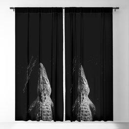 In Texas Blackout Curtain