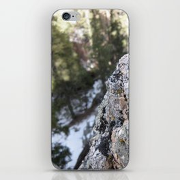 Crystalline Moss iPhone Skin