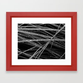 leaves of grass 4 Framed Art Print