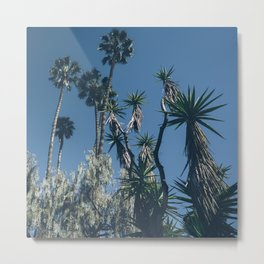 Crazy Palms Metal Print