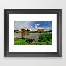 Black Swans at Leeds Castle II Framed Art Print
