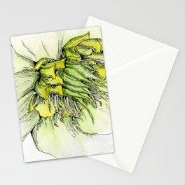 Watercolor Helleborus Stationery Cards