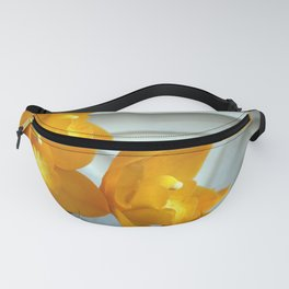 Old Yeller Fanny Pack