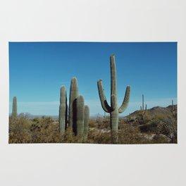 Arizona desert Rug
