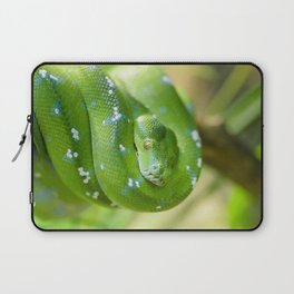 Green snake Laptop Sleeve