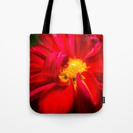 Deep Red Dahlia with Yellow Center Tote Bag