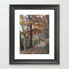 Into the fall woods. Yesterday Framed Art Print