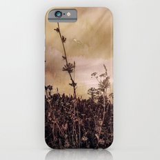 Last flowers of autumn Slim Case iPhone 6s