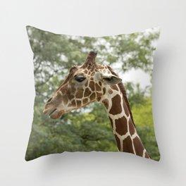 Talking Giraffe Throw Pillow