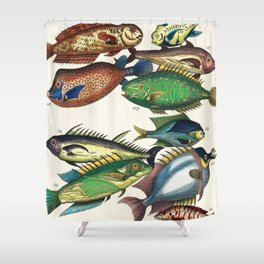 Illustrated Pacific Ocean Exotic Game Fish Identification Chart Shower Curtain