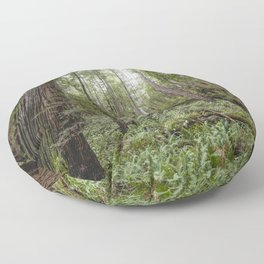 Fern Alley - Redwood Forest Nature Photography Floor Pillow
