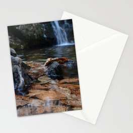 Leaves Underwater at Cascade Falls Stationery Cards