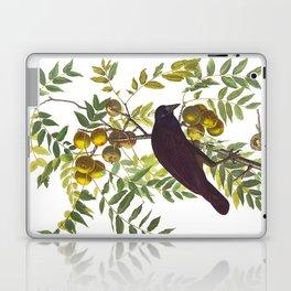 American Crow Vintage Bird Illustration Laptop & iPad Skin