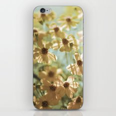 I live in the springtime iPhone & iPod Skin