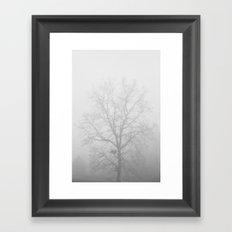 White Out - Hickory Tree Hidden in Dense Fog Framed Art Print