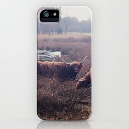Highland cows iPhone Case