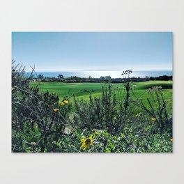 Rancho Palos Verdes Canvas Print