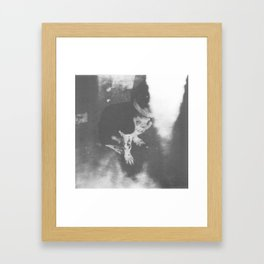 Mexican Dogs #2 Framed Art Print