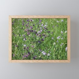 Purple Prairie Wildflowers Framed Mini Art Print