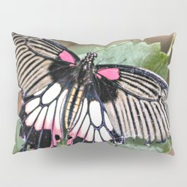 Majestic Tropical Butterfly Pillow Sham