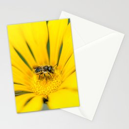 Searching for pollen Stationery Cards