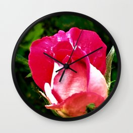 Evening Rose Wall Clock