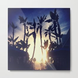 Califoria Metal Print