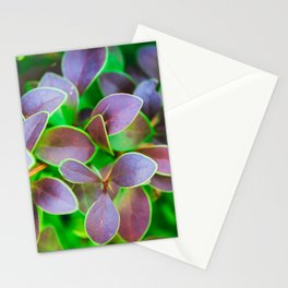 Vibrant green and purple leaves Stationery Cards