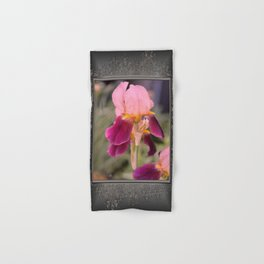 Tall Bearded Iris named Indian Chief Hand & Bath Towel