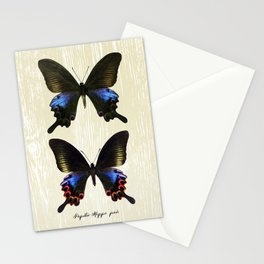 Butterfly11_Papilio Hoppo pair Stationery Cards