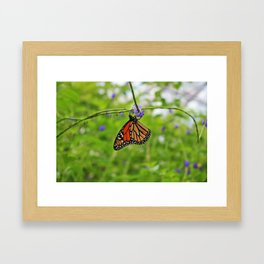 Trail of Consolation Framed Art Print