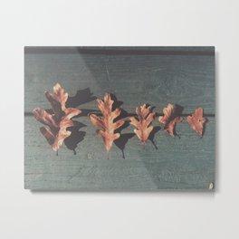 Oak Leaves Metal Print