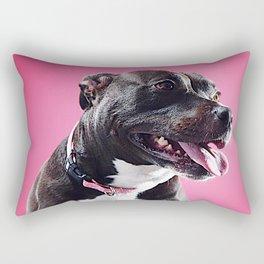 Super Pets Series 1 - Super Lucy Rectangular Pillow