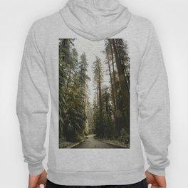 Redwood Forest Adventure III - Nature Photography Hoody