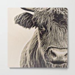 Vintage Highland Cow Metal Print