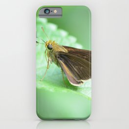 moth on a leaf iPhone Case