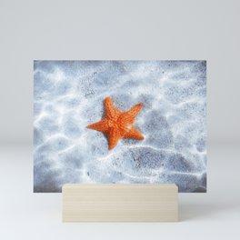 Starfish on a Sandy Sea Bottom Mini Art Print