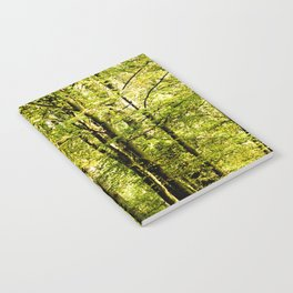 A pathway covered by leaves in a magical forest Notebook