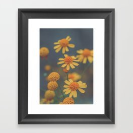Radiance beauty Framed Art Print
