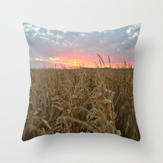 Corn Maze Sunset Throw Pillow